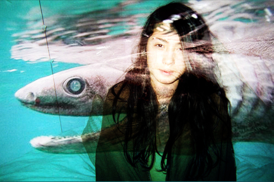 Rare-prehistoric-shark-in-japan-2